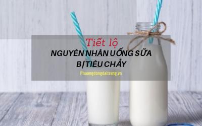 Tiết lộ nguyên nhân uống sữa bị tiêu chảy hành hạ.