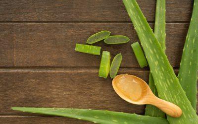 Top 8 thực phẩm giúp nhuận tràng ngừa táo bón hiệu quả.